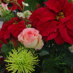 poinsettia cut flower arrangements (7)